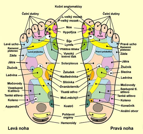 Reflexologie chodidel neboli reflexní masáž chodidel | Rehabilitace.info