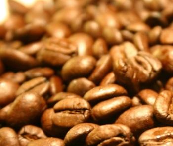 Kávový olej se k léčbě celulitidy začal používat poměrně nedávno, ale výsledky byly tak ohromující, že se začal využívat jako základ proticelulitídových a zeštíhlujících směsí.
