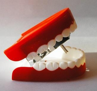 Co možná nevíte o zubech - zuby - zajímavosti a názvosloví