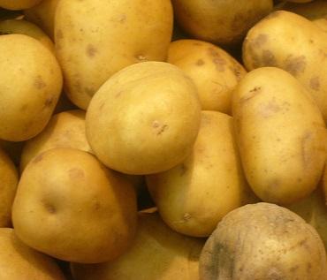 Poměrně velké množství vitaminu C je i v obyčejných bramborách...
