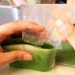 Detoxikace s pomocí aloe vera