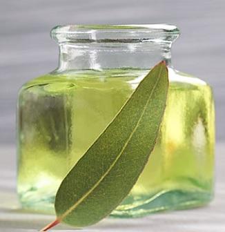 Eukalyptový olej a zdraví - na co se dá použít? Jaké má účinky?