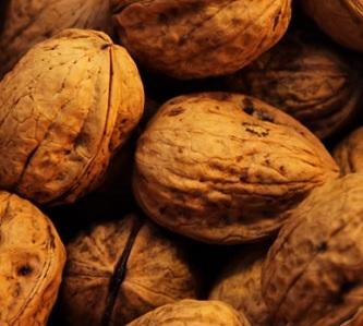Vlašské ořechy obsahují mastné kyseliny, které jsou zdrojem výživy a energie pro činnost mozku...