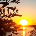 Jak si chránit pokožku před jarním sluncem?