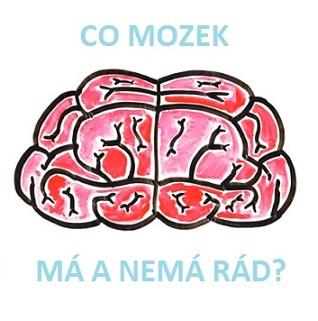 Co mozku škodí a co mu prospívá?