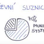 Vliv střevních mikroorganismů na naše zdraví