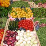 Raw food neboli syrová strava a zdraví – je to životní styl, ne dieta