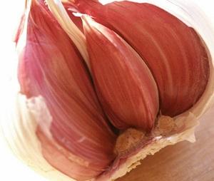 Česnek je výbornou potravinou na budování imunity.