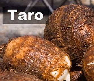 koren-taro