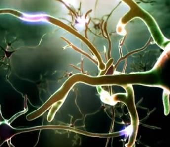 nootropika-mozek