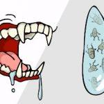 Vzteklina u člověka – příznaky, projevy a léčba