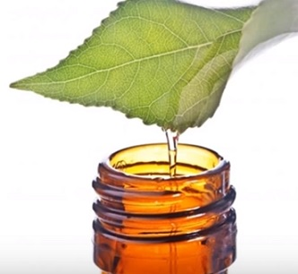 Jak použít čajovníkový olej na pleť?