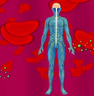 Které minerály v těle jsou důležité při rakovině?