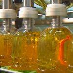 Je palmový olej skutečnou hrozbou? Je škodlivý?