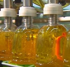 Je palmový olej škodlivý?