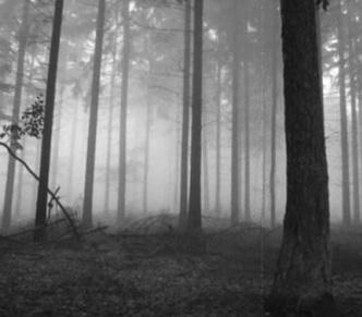 Jak si poradit s podzimní depresí?