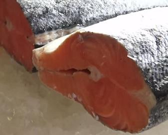 Které ryby zařadit do svého jídelníčku?