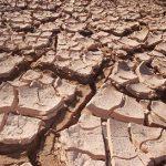 Jak na suchou pleť?
