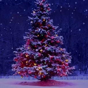Jak si poradit s vánočním stresem?