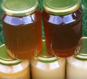 Med a jeho pozitiva