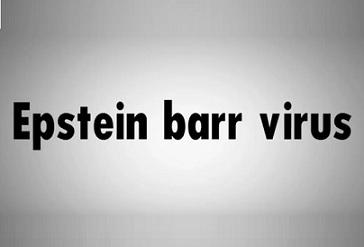 Virus Epstein-Barrové (ebv virus)