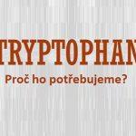 L-tryptofan a zdraví – proč ho naše tělo potřebuje a jaké má účinky?