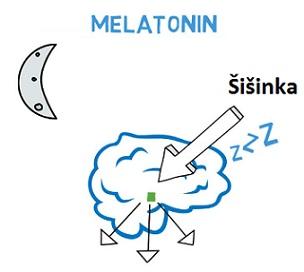 Melatonin a zdraví