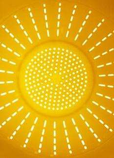 Vitamínu D se také někdy říká sluneční vitamín, protože ho čerpáme i ze slunečního záření.