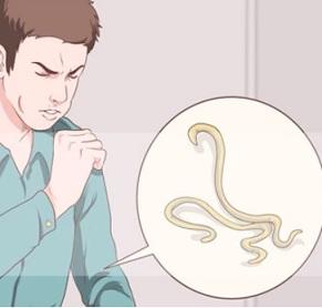 Askarióza - příčiny, průběh infekce a léčba