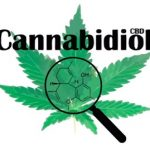 Kanabidiol (Cannabidiol, CBD) a zdraví – jaké má účinky?