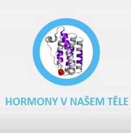 Hormony v našem těle mohou nadělat pořádnou paseku, pokud nefungují tak, jak mají.