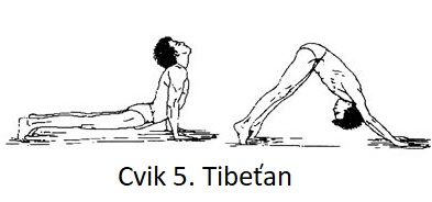 Cvik 5. Tibeťan