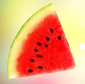 Jaké zdravotní benefity mají melounová semínka? Čtěte!