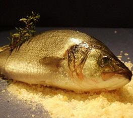Ryby, rybí maso a jejich účinky na zdraví - proč si je dát?
