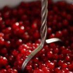 Červený a černý rybíz – zdravé ovoce z našich zahrádek