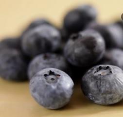 Kde najdete hodně antioxidantů?