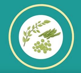Co jsou funkční potraviny a superpotraviny?