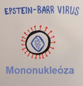 Mononukleóza - příznaky, příčiny, přenos