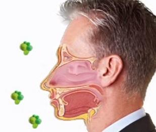 Alergeny jsou všude kolem nás. Které alergie jsou nejčastější?