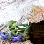Brutnákový olej (olej z brutnáku lékařského) a zdraví – jaké má účinky?