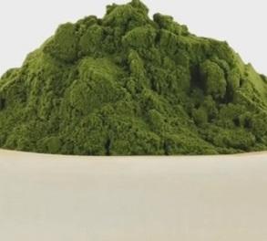 Může nějak chlorella přispět k léčbě rakoviny?
