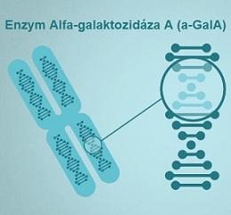 Základem je nedostatek enzymu alfa-galaktozidázy A (a-GalA).