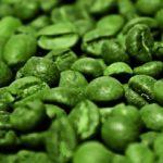 Kyselina chlorogenová a její účinky – v kterých potravinách ji najdete?