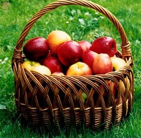 Největším zdrojem pektinu jsou jablka.