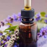 Šalvějový olej a jeho účinky – jak se dá vyrobit?