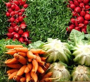 Zařaďte určitě kořenovou zeleninu do svého jídelníčku. vaše tělo vám poděkuje.