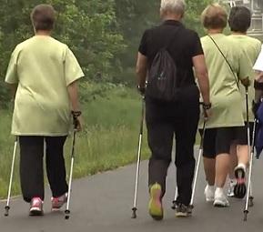Zkuste Nordic Walking také vy. Je to zdravý a šetrný sport.