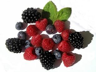 Různé bobulovité ovoce má účinky proti rakovině.
