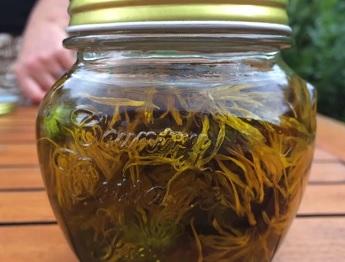 Měsíčkový olej se používá hlavně k péči o pleť a k léčbě problémů na pokožce. Má skvělé protizánětlivé vlastnosti.