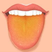 Žlutý jazyk